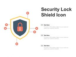 Security Lock Shield Icon