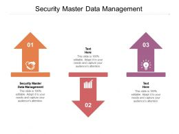 Security Master Data Management Ppt Powerpoint Presentation Gallery Gridlines Cpb