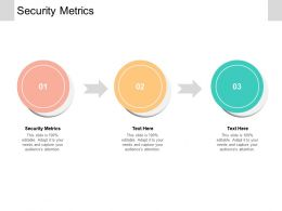 Security Metrics Ppt Powerpoint Presentation Gallery Picture Cpb