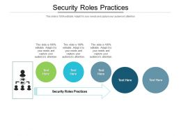 Security Roles Practices Ppt Powerpoint Presentation Ideas Backgrounds Cpb