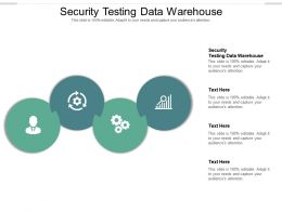 Security Testing Data Warehouse Ppt Powerpoint Presentation Outline Picture Cpb