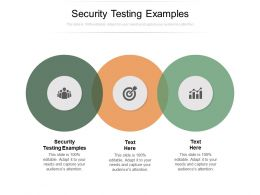 Security Testing Examples Ppt Powerpoint Presentation Summary Maker Cpb
