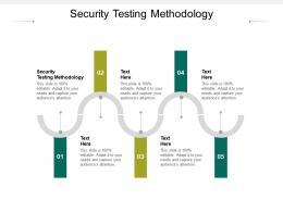 Security Testing Methodology Ppt Powerpoint Presentation Portfolio Templates Cpb
