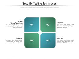 Security Testing Techniques Ppt Powerpoint Presentation Summary Example File Cpb