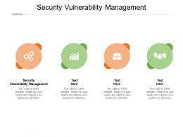 Security Vulnerability Management Ppt Powerpoint Presentation Styles Infographics Cpb