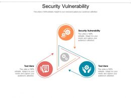 Security Vulnerability Ppt Powerpoint Presentation Professional Infographics Cpb