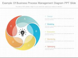 See Example Of Business Process Management Diagram Ppt Slide