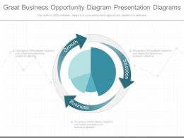See Great Business Opportunity Diagram Presentation Diagrams