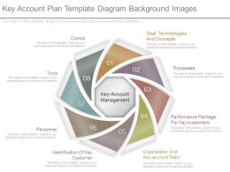 See Key Account Plan Template Diagram Background Images
