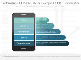 See Performance Of Public Sector Example Of Ppt Presentation