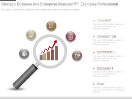 See Strategic Business And Enterprise Analysis Ppt Examples Professional