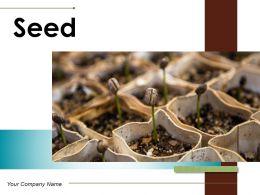 Seed Measurement Dandelion Depicting Assorted Germinating