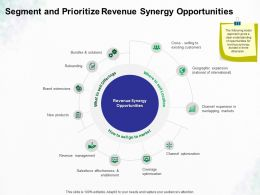 Segment And Prioritize Revenue Synergy Opportunities Ppt Powerpoint Presentation Icon Themes