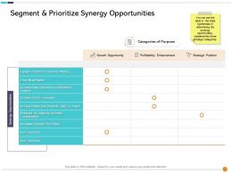 Segment And Prioritize Synergy Opportunities Brand Ppt Powerpoint Presentation Professional Ideas