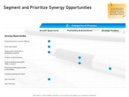 Segment And Prioritize Synergy Opportunities Offering Ppt Powerpoint Presentation Background