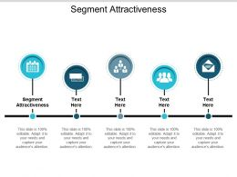 Segment Attractiveness Ppt Powerpoint Presentation Ideas Display Cpb
