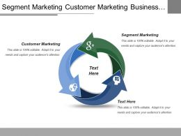 Segment Marketing Customer Marketing Business Strategy Business Model