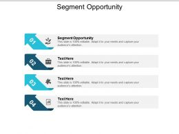 Segment Opportunity Ppt Powerpoint Presentation Ideas Format Cpb