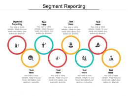 Segment Reporting Ppt Powerpoint Presentation Model Cpb