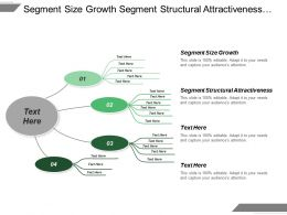 Segment Size Growth Segment Structural Attractiveness Substitute Product