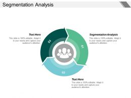 Segmentation Analysis Ppt Powerpoint Presentation Infographic Template Slide Portrait Cpb