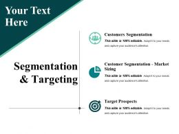 Segmentation And Targeting Ppt Presentation Examples