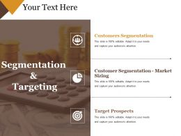 Segmentation And Targeting Sample Of Ppt Presentation