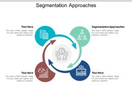 Segmentation Approaches Ppt Powerpoint Presentation Icon Gallery Cpb