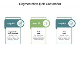 Segmentation B2B Customers Ppt Powerpoint Presentation Slides Show Cpb