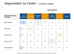 Segmentation By Cluster Customer Insights Lovers Ppt Powerpoint Presentation Icon Example