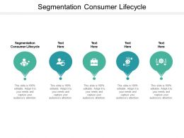 Segmentation Consumer Lifecycle Ppt Powerpoint Presentation Show Visual Aids Cpb