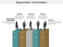 Segmentation Customization Ppt Powerpoint Presentation Ideas Grid Cpb