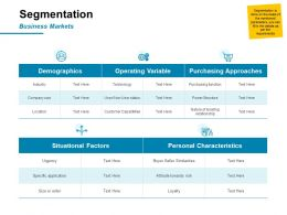 Segmentation Demographics Ppt Powerpoint Presentation Model Visuals