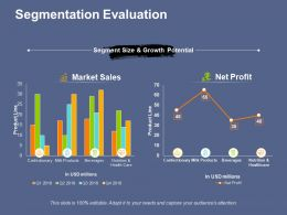 Segmentation Evaluation Ppt File Professional