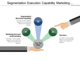 Segmentation Execution Capability Marketing Structure Understanding Mass Marketing