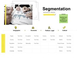 Segmentation Geographic Ppt Powerpoint Presentation Icon