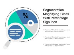 Segmentation Magnifying Glass With Percentage Sign Icon