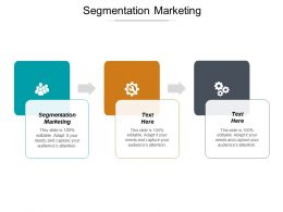 Segmentation Marketing Ppt Powerpoint Presentation Model Slide Cpb