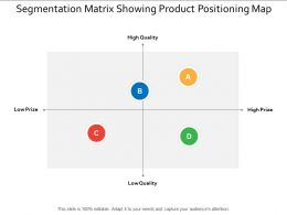 Segmentation Matrix Showing Product Positioning Map