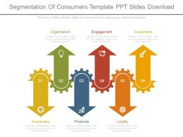 Segmentation Of Consumers Template Ppt Slides Download