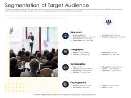 Segmentation Of Target Audience Alternative Financing Pitch Deck Ppt Slide Portrait