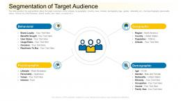 Segmentation Of Target Audience Community Financing Pitch Deck Ppt Gallery Skills