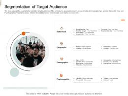 Segmentation Of Target Audience Equity Crowd Investing Ppt Icons