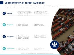 Segmentation Of Target Audience Ppt Powerpoint Presentation Pictures Visual Aids