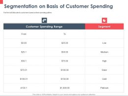 Segmentation On Basis Of Customer Spending Range Ppt Powerpoint Presentation File Portrait