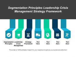 Segmentation Principles Leadership Crisis Management Strategy Framework Cpb