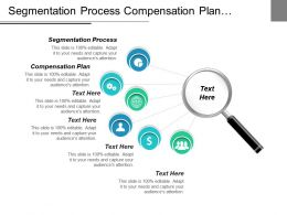 Segmentation Process Compensation Plan Competitive Strategy Michael Porter Cpb