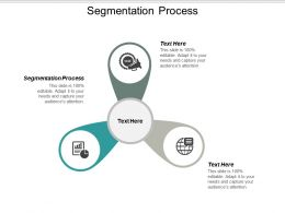 Segmentation Process Ppt Powerpoint Presentation Gallery Slide Download Cpb