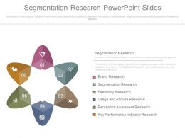 Segmentation Research Powerpoint Slides