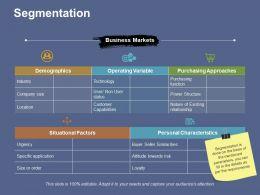 Segmentation Responsibility Framework Ppt File Summary